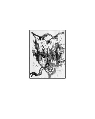 120009-1 (Blanc+Noir)